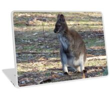 Australian Wildlife - Bennett's Wallaby Laptop Skin