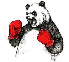 The Angry Winner  With Gloves Panda Bear Photographic Print