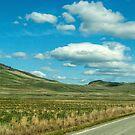 Crossing the Camas Prairie by Bryan D. Spellman