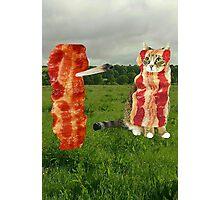 bakon family cat Photographic Print