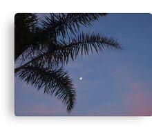 Moonlit sunset Canvas Print