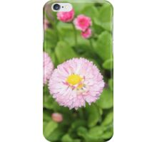 Pretty Little Pinks iPhone Case/Skin