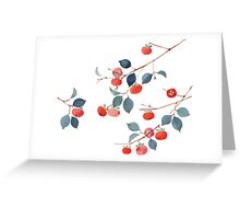 Persimmon Harvest Greeting Card