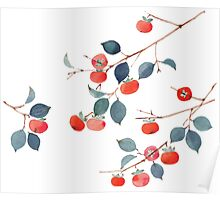 Persimmon Harvest Poster