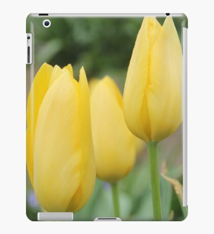 Yellow Buds of Tulips iPad Case/Skin