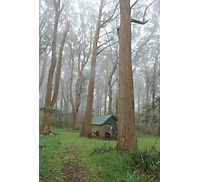Yes this is a Picnic Area Photographic Print