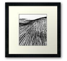 Abstract Field (black) Framed Print