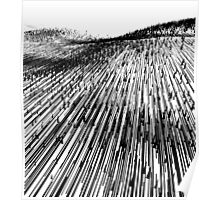 Abstract Field (black) Poster