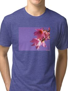 Pink & Purple Dahlias Tri-blend T-Shirt