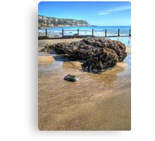 Large rock at The Warren, Folkestone (2) Canvas Print
