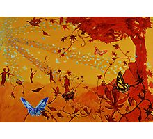 Colorful butterflies, nature, summer, spring, atum, happiness and love Photographic Print