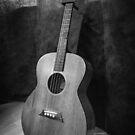 Acoustic Guitar by Stevie B