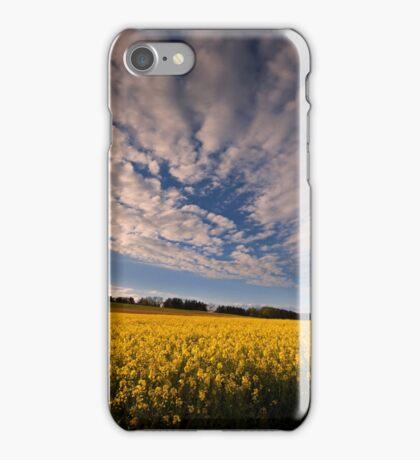 Dizziness of Spring iPhone Case/Skin
