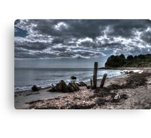 Driftwood on the beach (2) Canvas Print