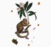 Monkey World: Amber-Ella One Piece - Short Sleeve