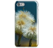 Dandelion iPhone Case/Skin