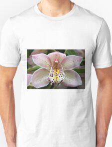 Beautiful Orchids T-Shirt