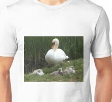 A family Photograph of the Swan and the cygnets Unisex T-Shirt