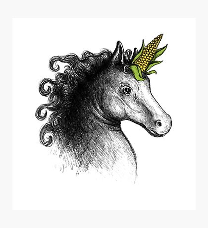 UniCorn Photographic Print