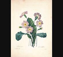 Choix des plus belles fleurs et des plus beaux fruits Pierre Joseph Redouté 1833 120 Beautiful Flowers Finest Fruits Unisex T-Shirt