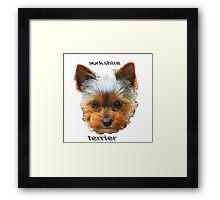 Printing dogs - Yorkshire Terrier Framed Print