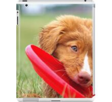 Toller Puppy with Frisbee iPad Case/Skin