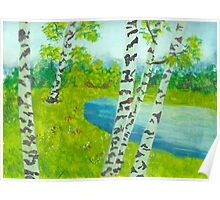The birch tree forest Poster