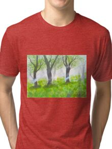 Forest with sunlight.  Tri-blend T-Shirt