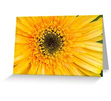 Vibrant Blooms in Yellow 2 Greeting Card
