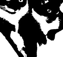 Tuxedo Cats Sticker