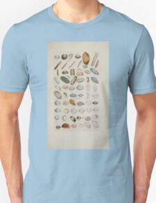 Index testaceologicus an illustrated catalogue of British and foreign shells 044 T-Shirt