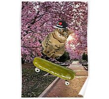 dill pickle cat Poster