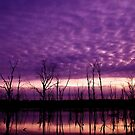 Purple Lake by Penny Kittel