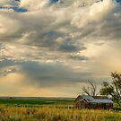 Country Air by Bo Insogna