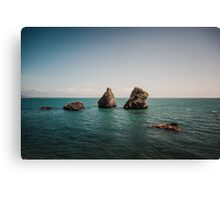Rocks From the Sea Canvas Print