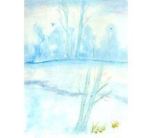 Foggy winter landscape frosty morning Photographic Print