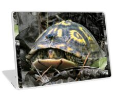 """Will you flit a little faster?"" said the turtle to the fly. Laptop Skin"