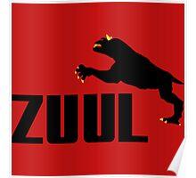 ZUUL Poster