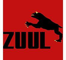 ZUUL Photographic Print