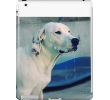 for the love of dogs. iPad Case/Skin