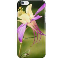 Aquilegia Columbine iPhone Case/Skin