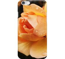 A rose by any other name. By D Johnson iPhone Case/Skin