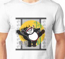 Martial Arts Panda - Grey Unisex T-Shirt
