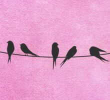 Pink coral Birds On A Wire Sticker