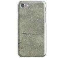 Plaice iPhone Case/Skin