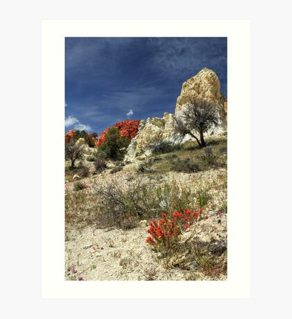 Red Flowers At Red Rock Canyon Art Print