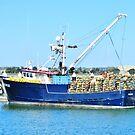 Crab Boat by marilyn diaz