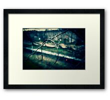 Rusted, busted Princess Framed Print