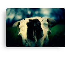 Left Behind - 2 Canvas Print