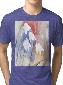 Hope and Endurance Tri-blend T-Shirt